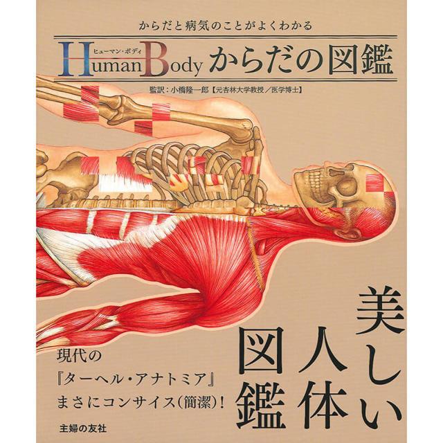 【小橋隆一郎 監訳】ヒューマン・ボディ からだの図鑑