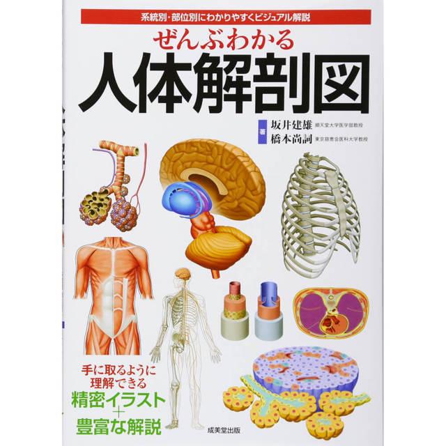 ぜんぶわかる人体解剖図—系統別・部位別にわかりやすくビジュアル解説