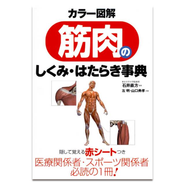 筋肉のしくみ はたらき事典